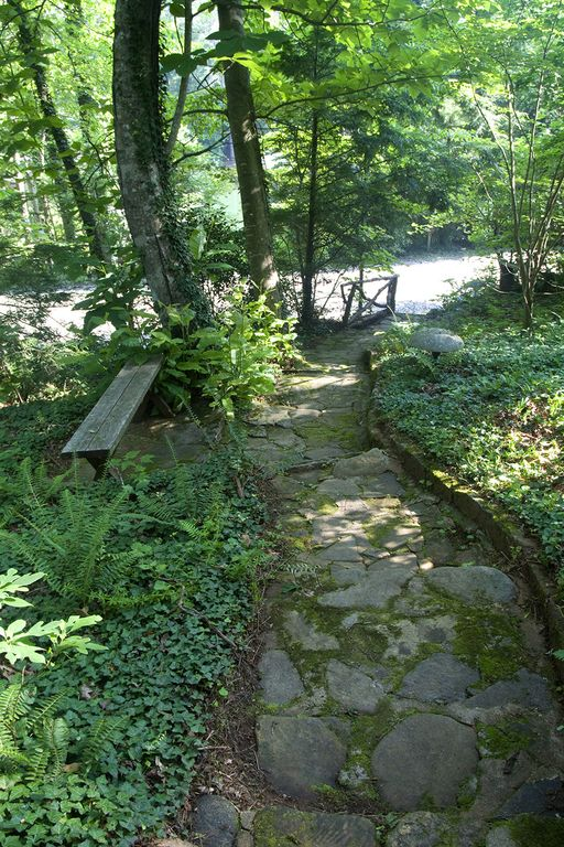 Charming path from house down to lake