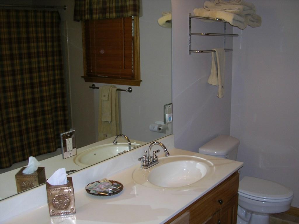 Bathroom tub and shower
