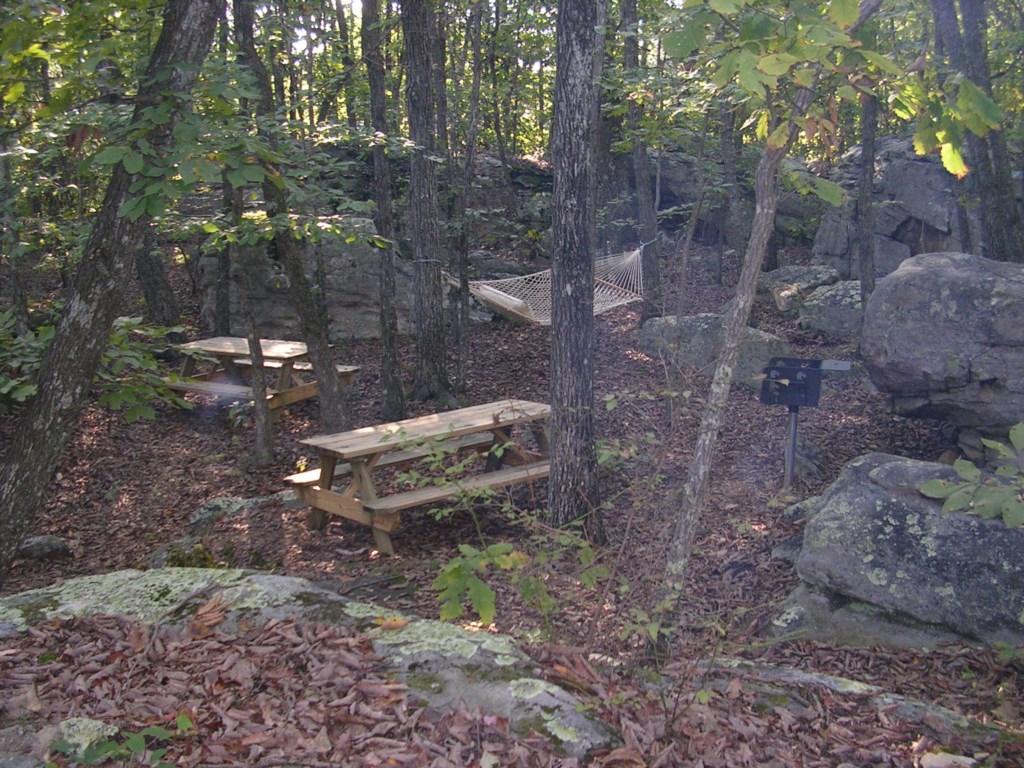 Outside picnic area