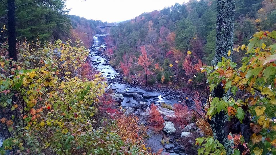 Little River fall-1.jpg