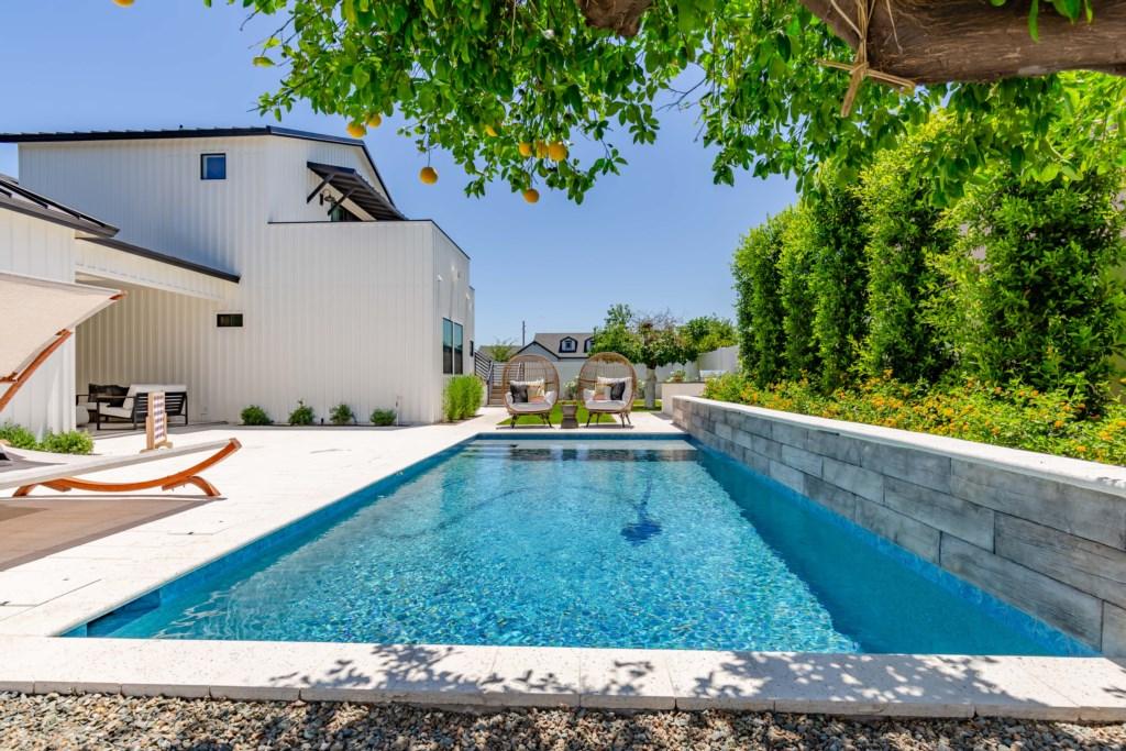 Soak up the AZ sun in this beautiful pool!