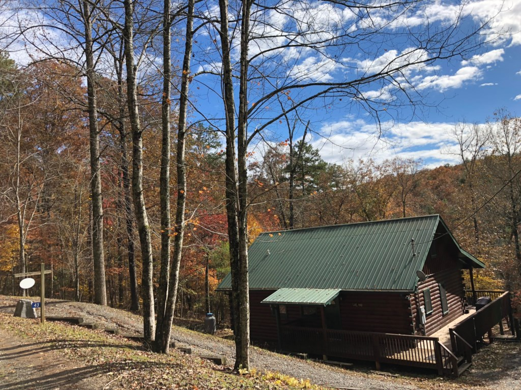 Perched in the woods you will find your log cabin with a metal roof