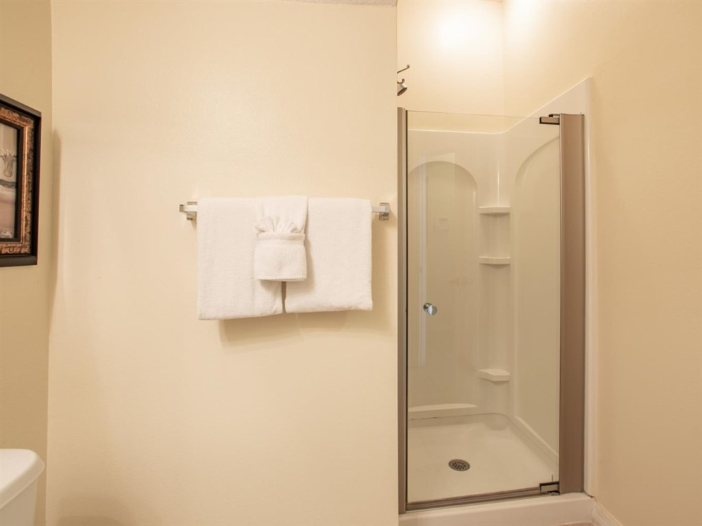 Walk-in Shower.