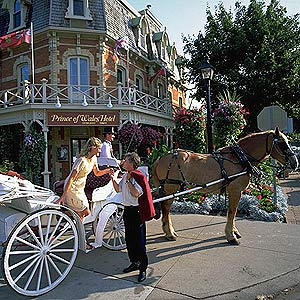Take a romantic carriage ride around town! Niagara-on-the-Lake