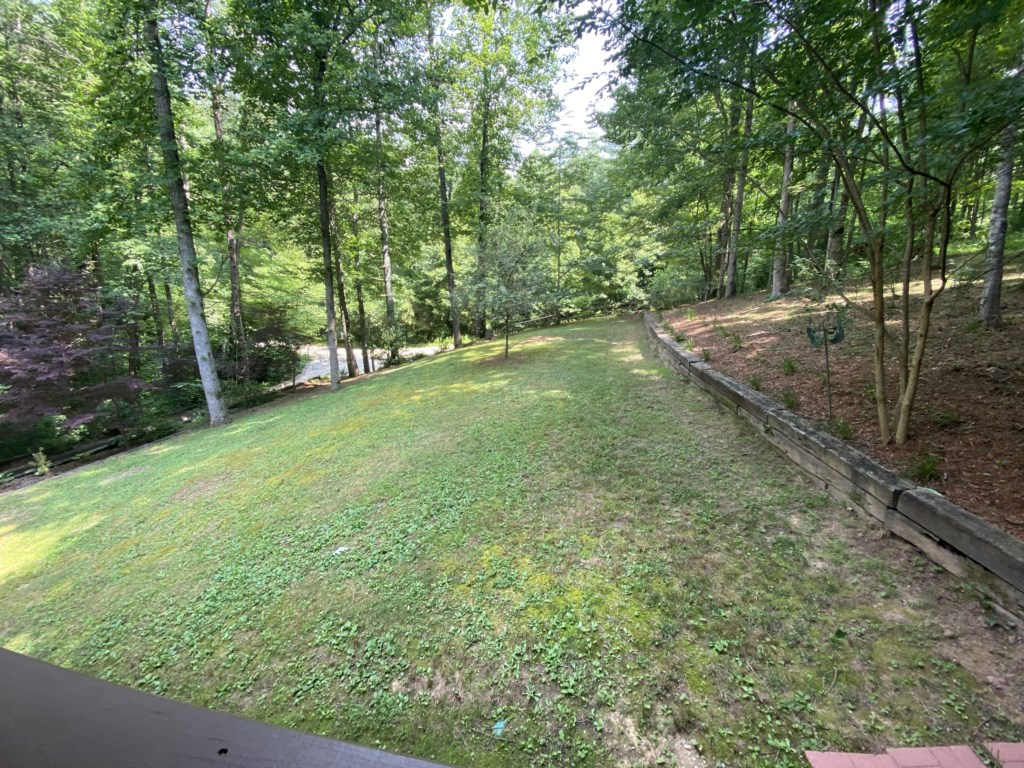Wonderful woodland and creek views