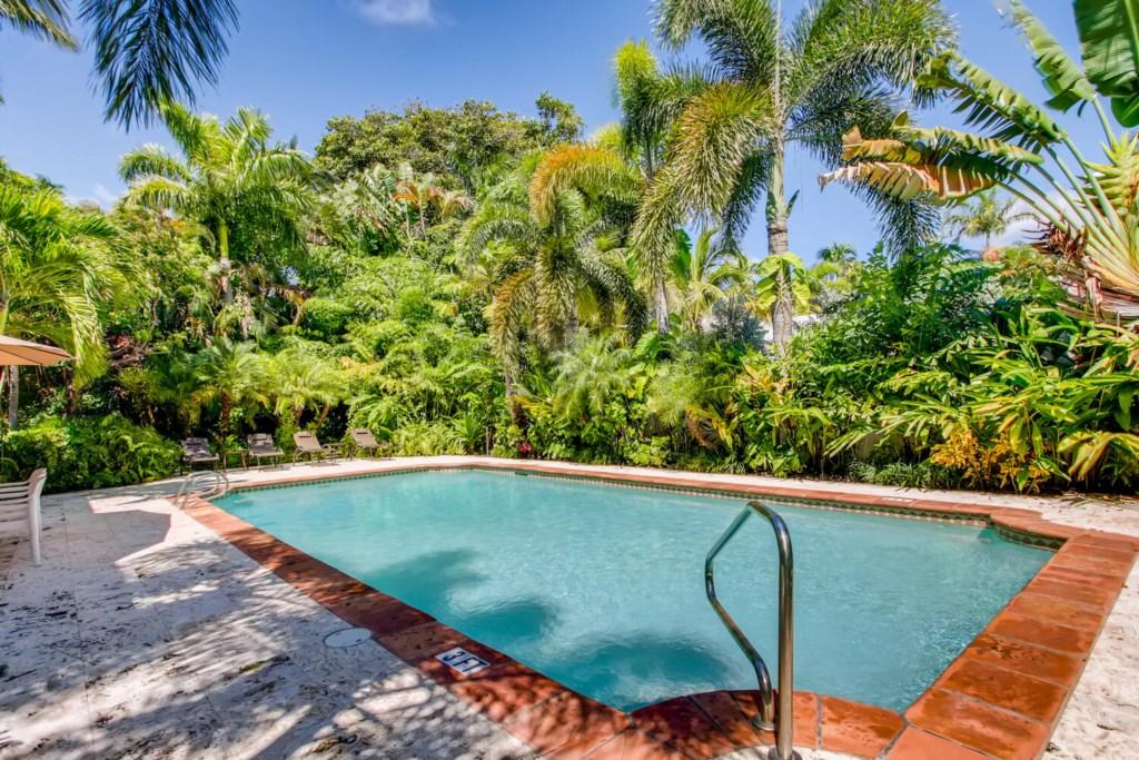Pool / Backyard with luscious greenery