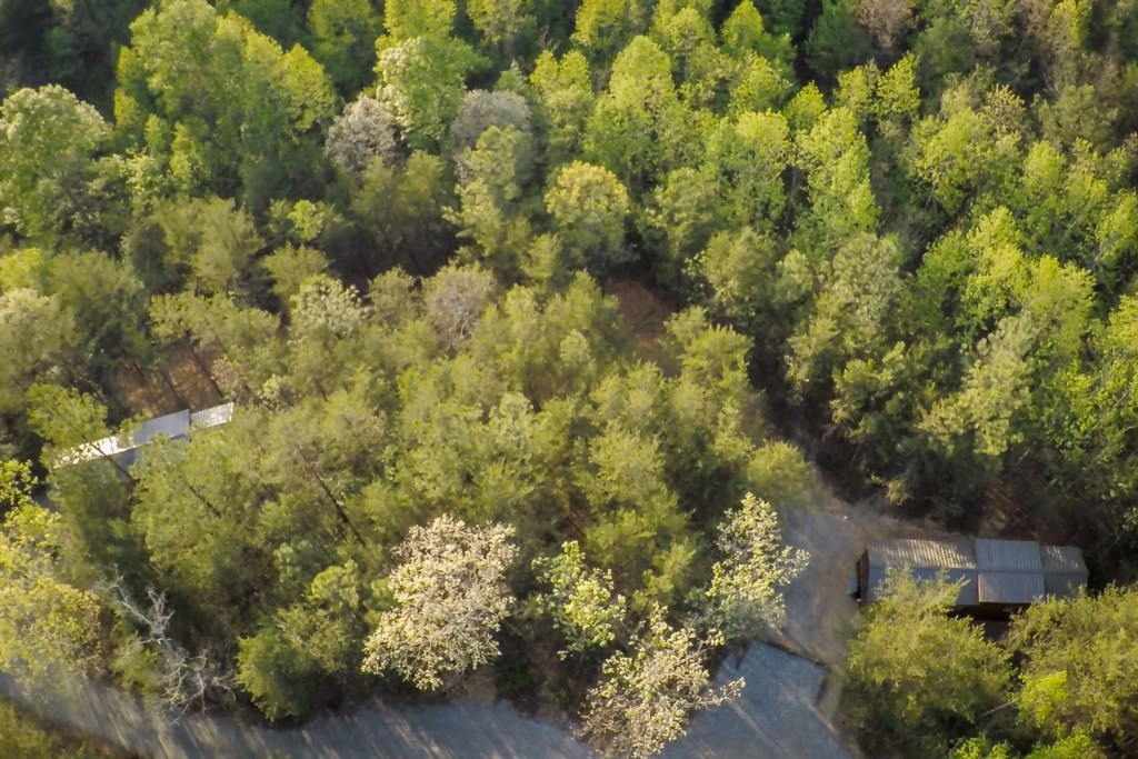 Cabins_From_Above