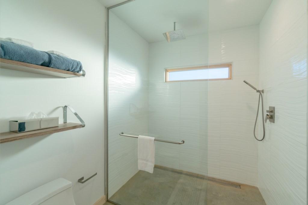 Pointe D Shower