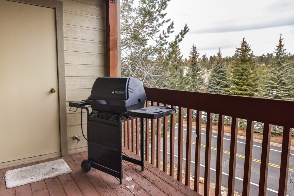 Grill on the Deck Perfect for BBQ's
