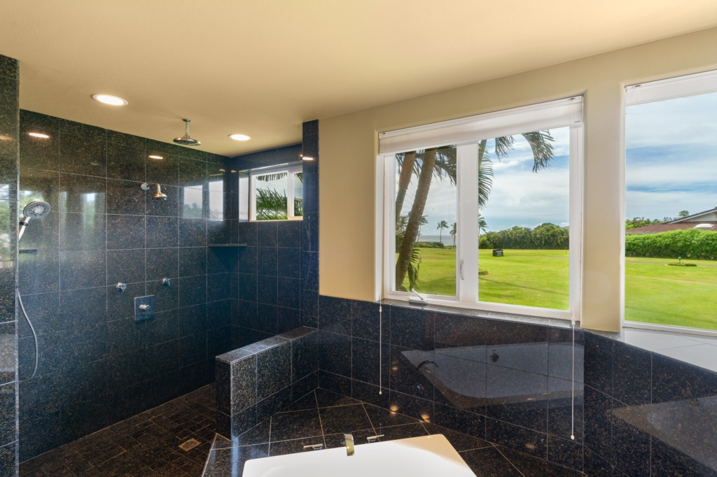 Amaing walk-in shower with spa tub & great view