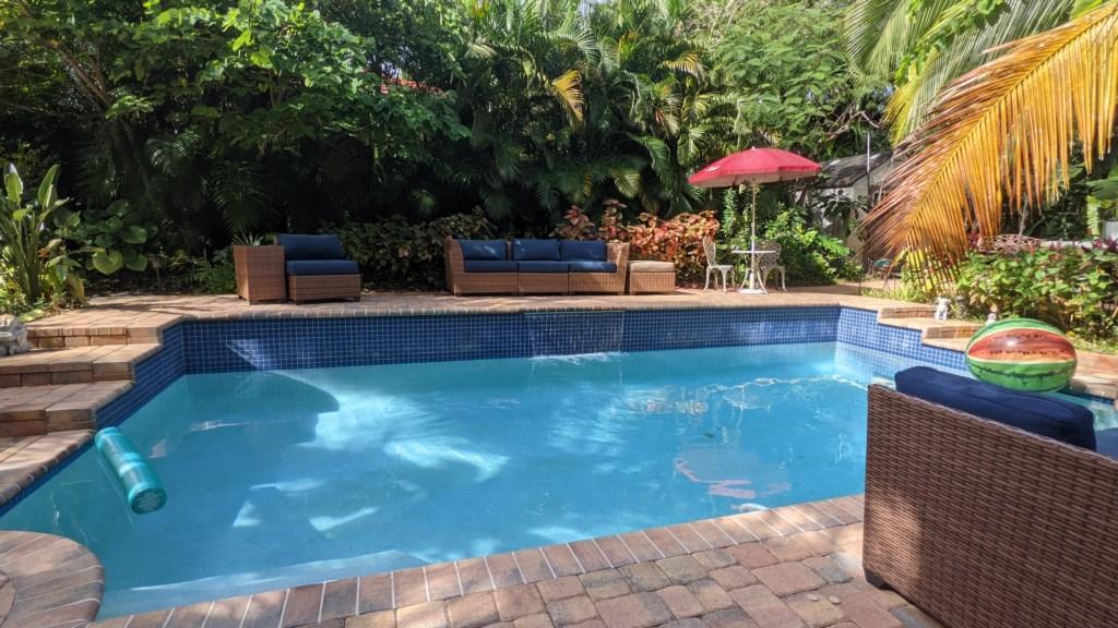flamingo garden pool.jpg