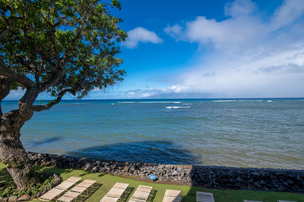 Sunbathe oceanfront Kahana Reef shoreline.