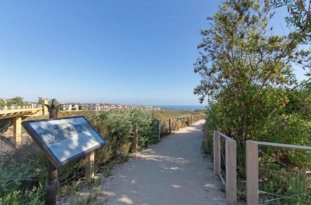 Beach Trail.jpg