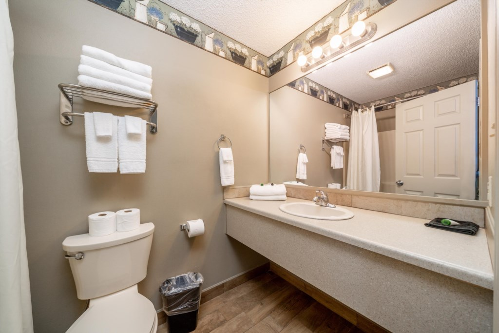 Clean, well appointed Bathroom
