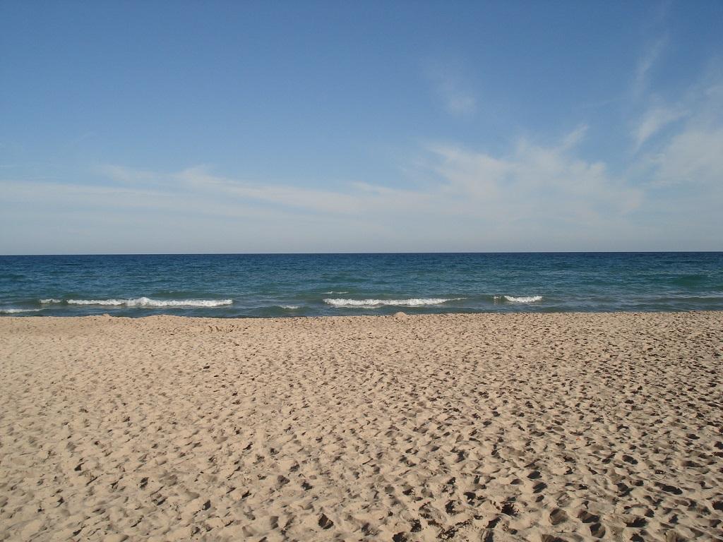 New Buffalo Beaches!
