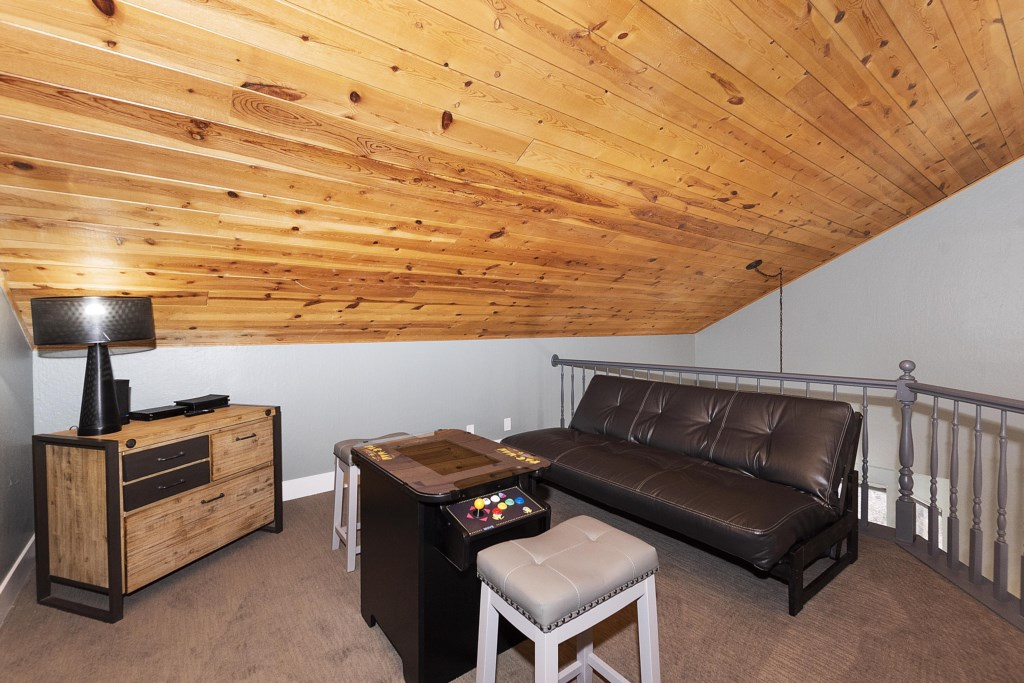 Loft with TV, Leather Futon and PacMan