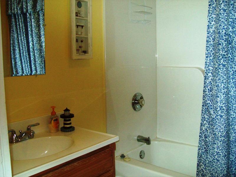 Condo_2_Bathroom_5.8.13_New_Website_010