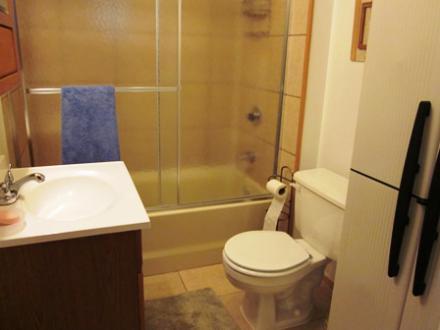 6.5.12_437_Cedar_Downstairs_Bathroom_031