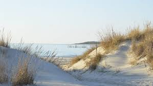 Kiptopeke State Park offers Birdwatching, walking trails , fishing pier and a beautiful beach. A five minute drive.