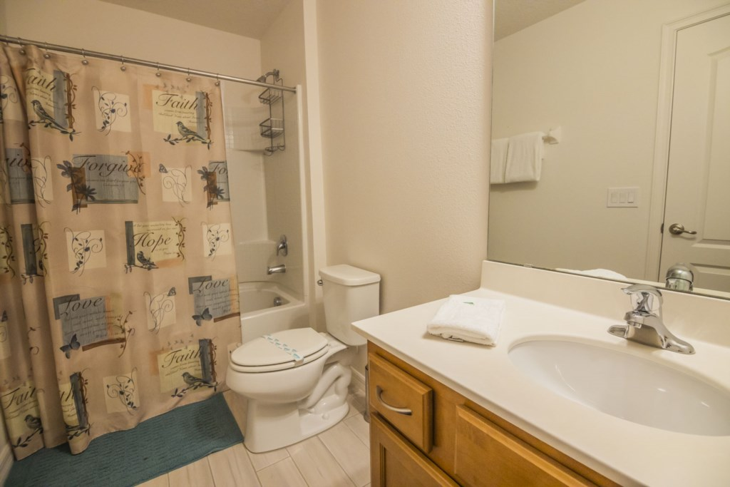 Vacation Home Master Bathroom 2
