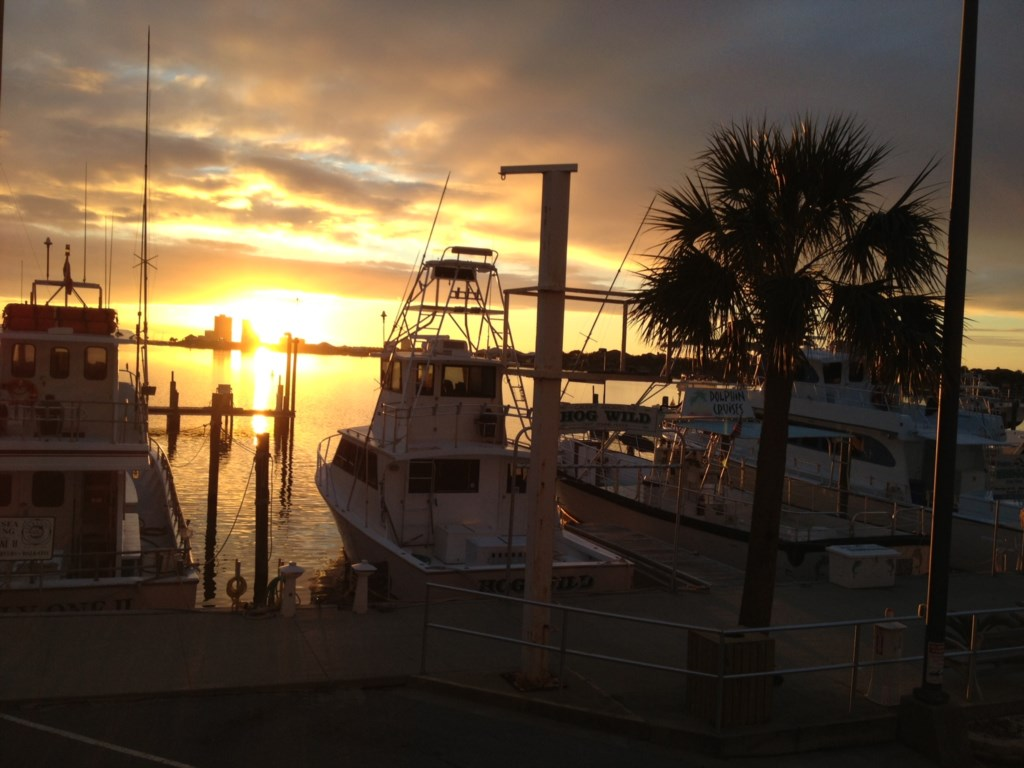 Check out local fishing charters