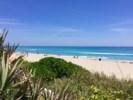 Palm Beach Midtown Beach 2_preview.jpeg