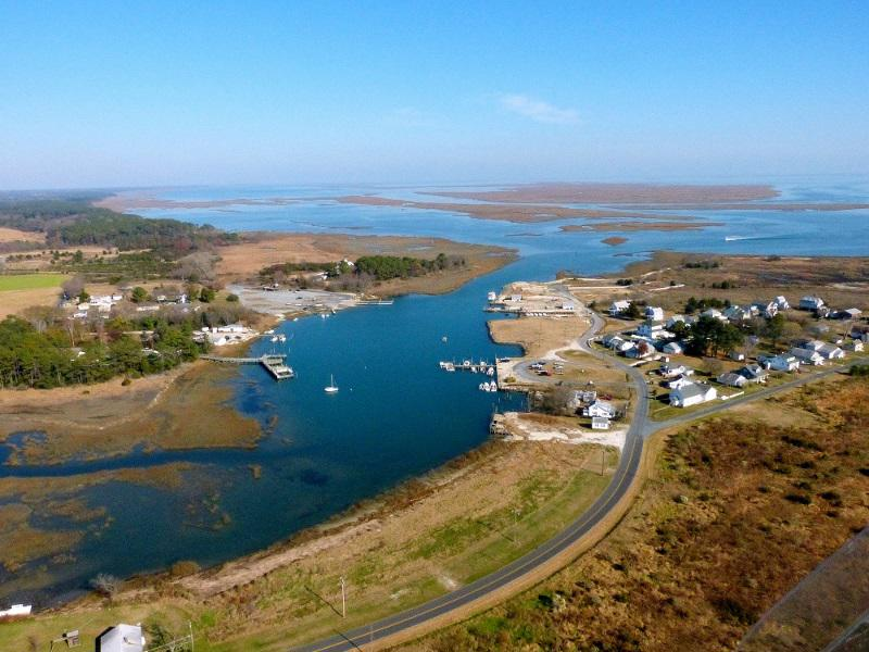 Oyster Harbor. Take an Eco-Tour to the Barrier Islands. There is an abundance of wildlife to experience.
