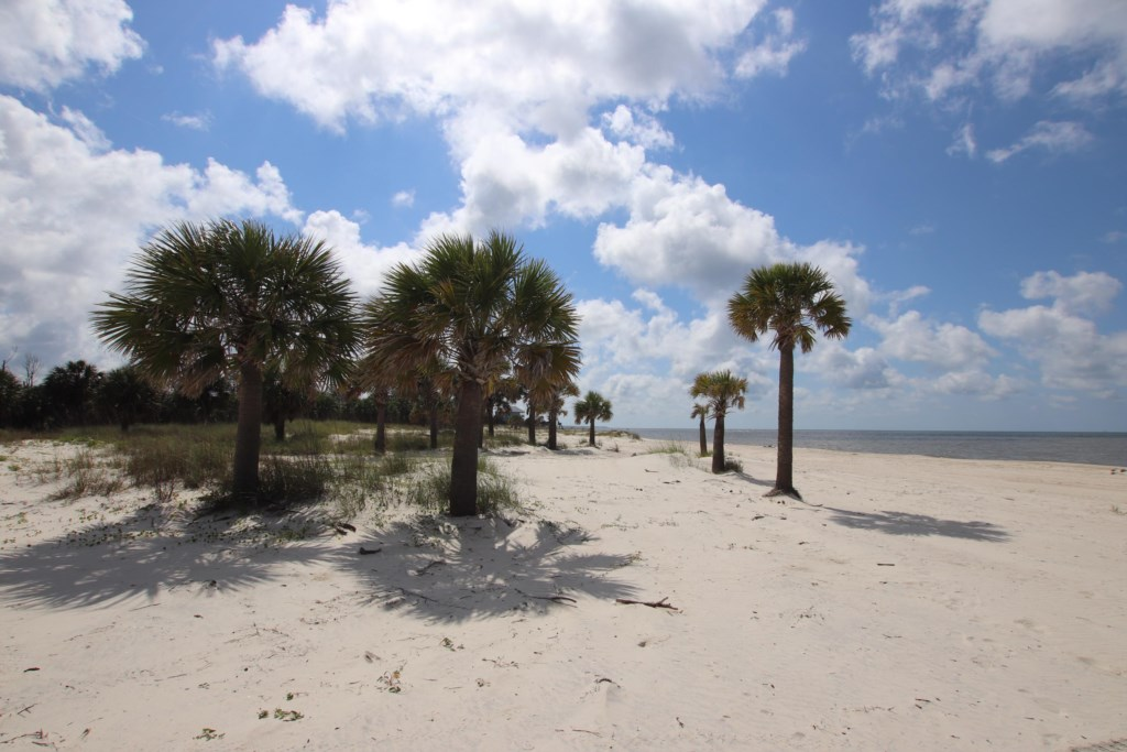 With a double lot, beach access is a breeze