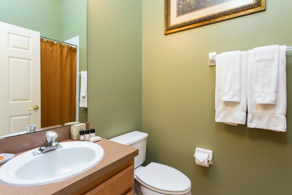 Downstairs hall bathroom 4