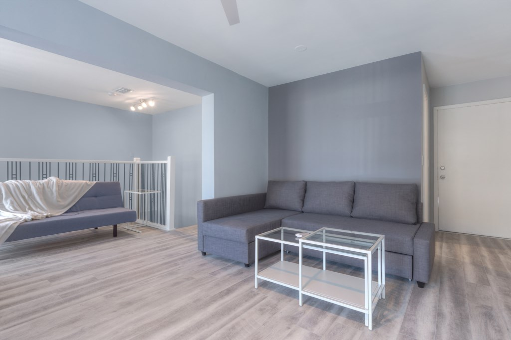 Second Living Room, with a Sleeper Sofa and a Futon