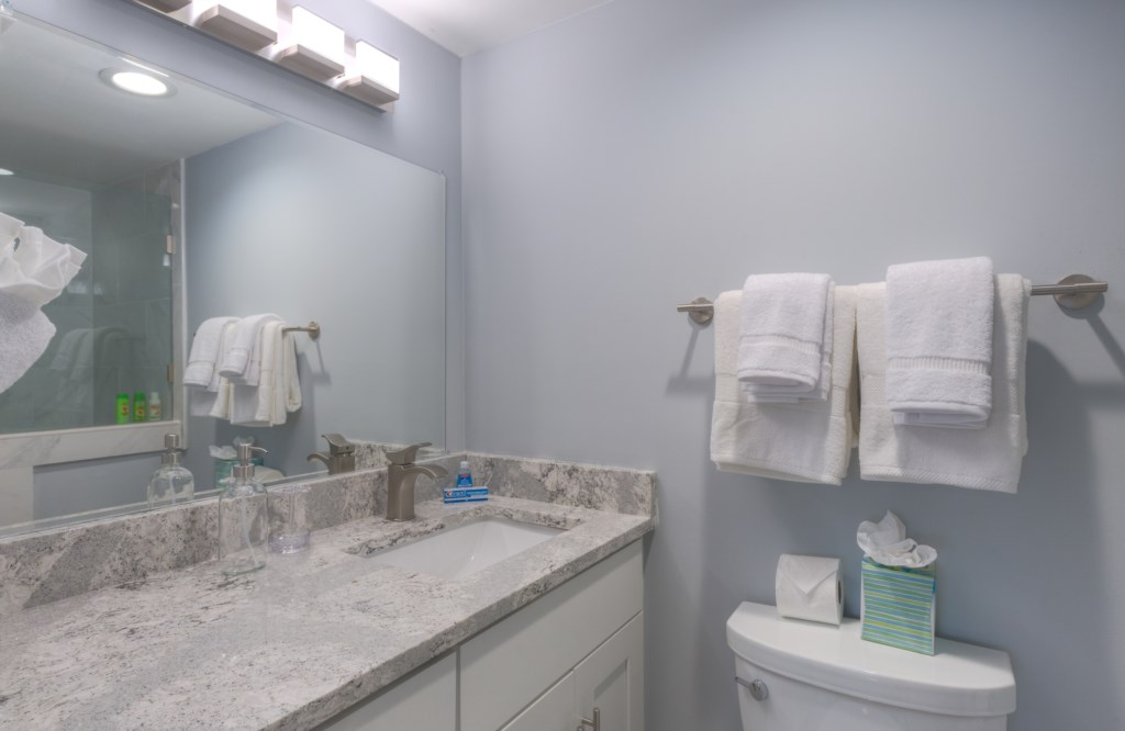 Upgraded Bathroom Design