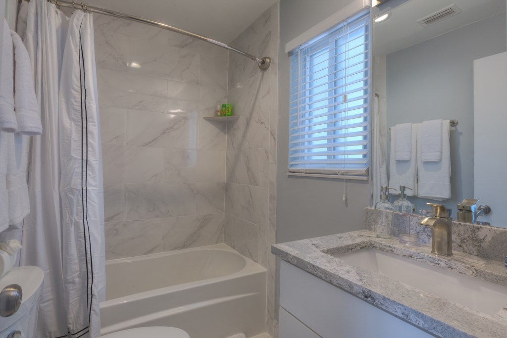 Elegant Shower Tub Design