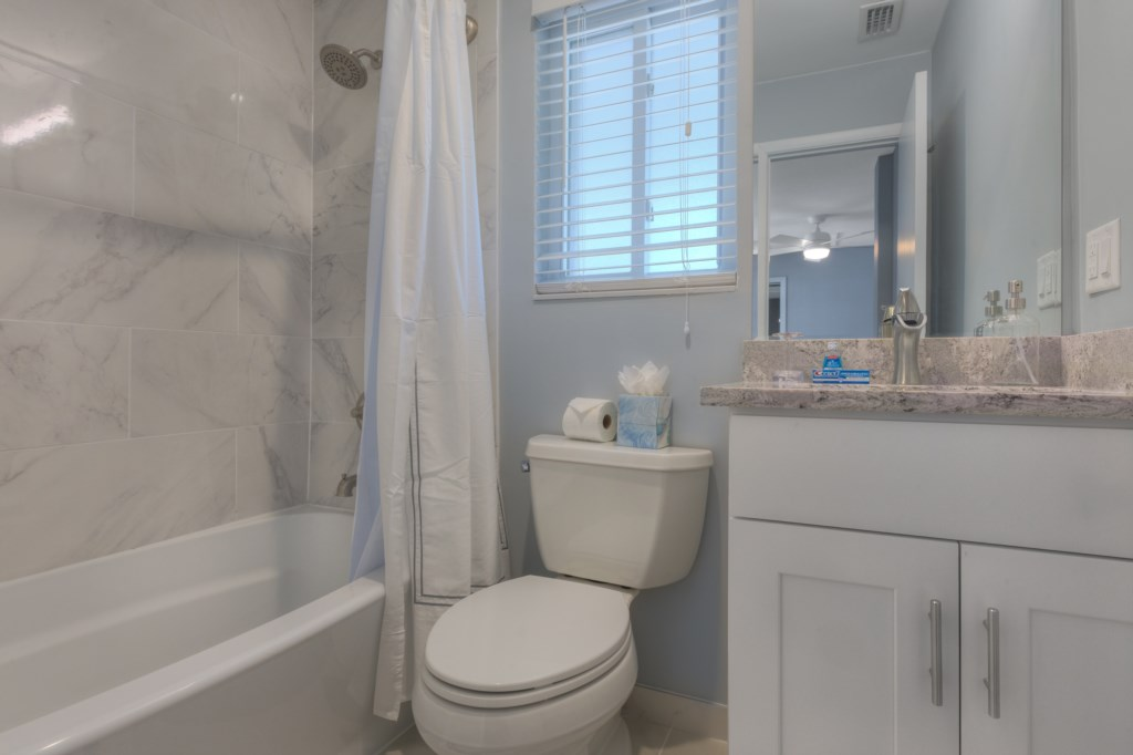 Luxury Shower Tub Combo