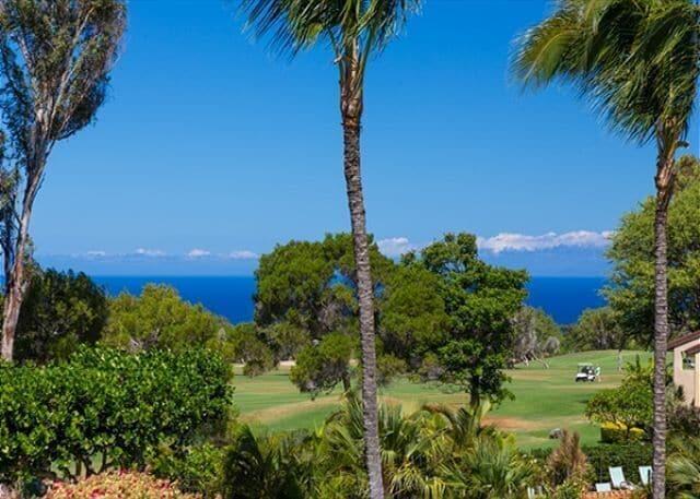 Tropical Ocean Views