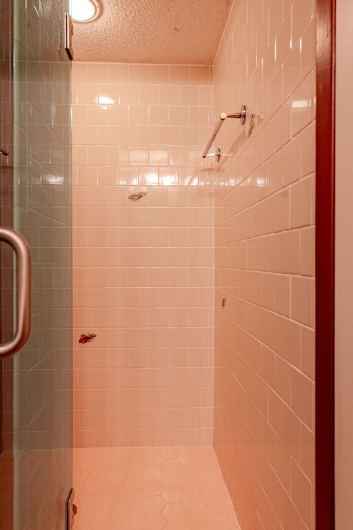 Shower in the hall bath
