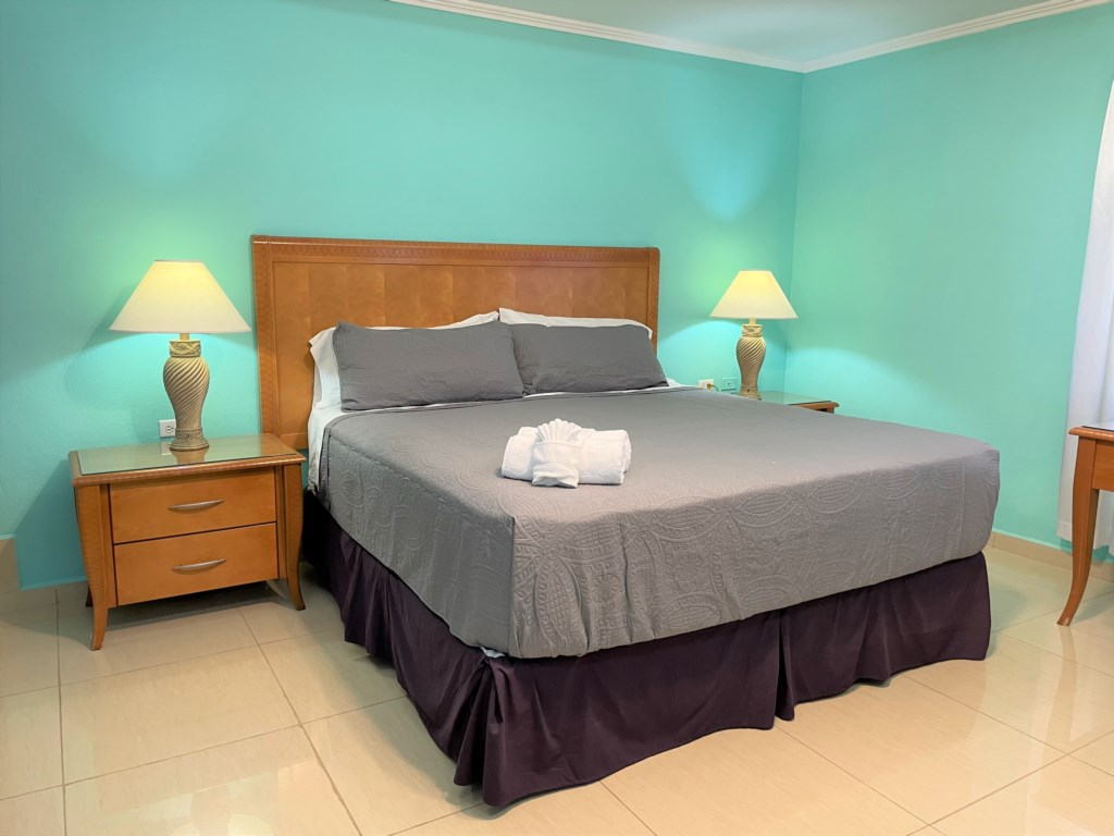 Master room with king size bed, with sofa bed, with smart tv, air aconditioner, ceiling fan