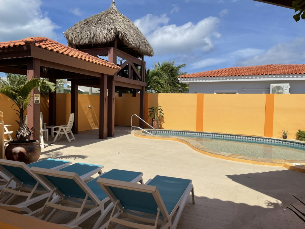 Palapa, large pool chairs, outsite table