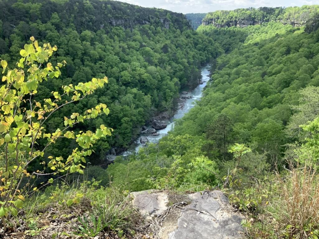 Little River 1.JPEG